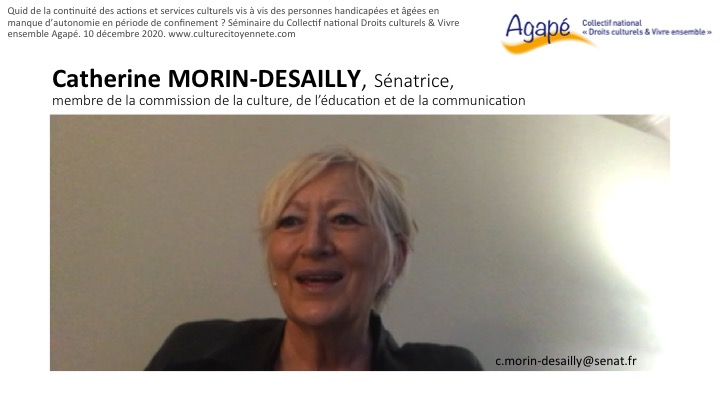 intervenante catherine morin-desailly